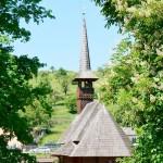 Mii de credincioşi s-au rugat la mănăstirea Dobric