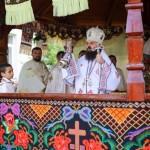 Episcopul-vicar-Benedict-Bistriteanul-10